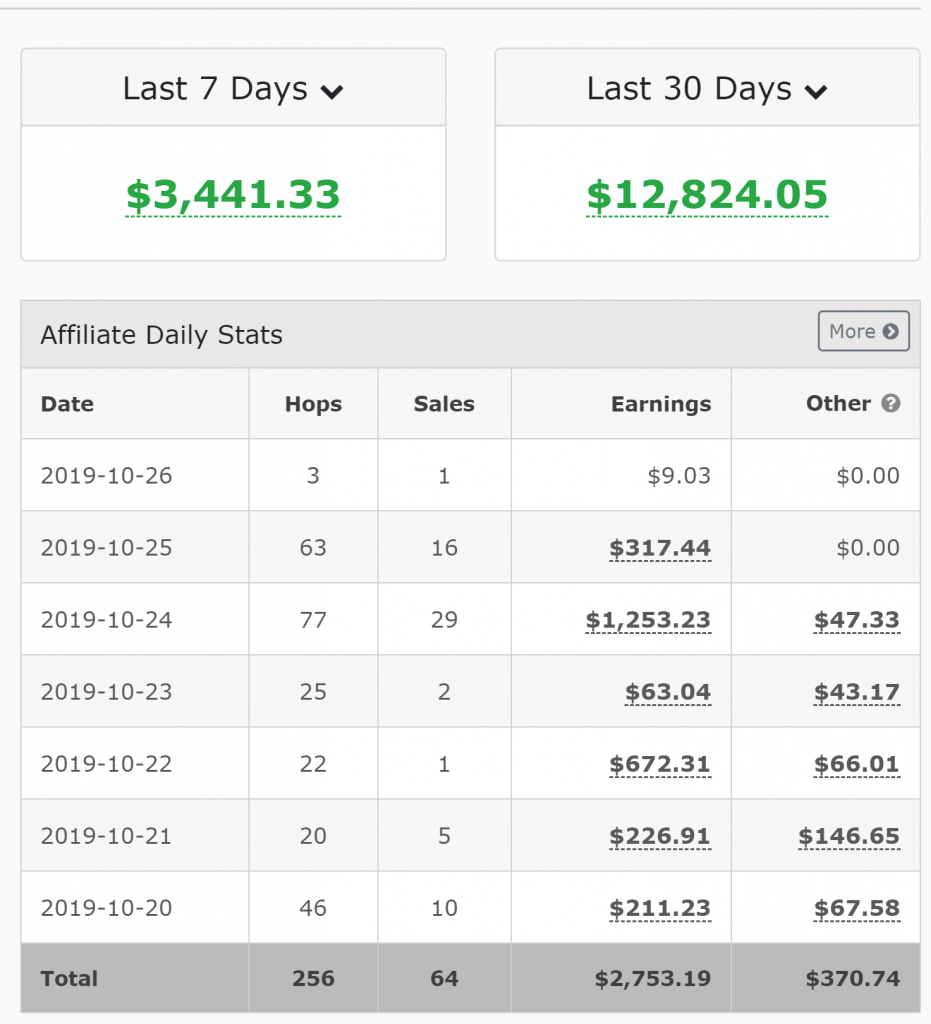 Picture of my affiliate marketing earnings